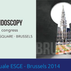 23° Congresso Annuale ESGE – Brussels 2014