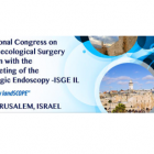 15th Annual Meeting of the Israeli Society of Gynecologic Endoscopy – ISGE IL