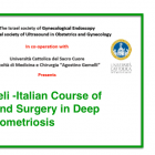 First Israelic – Italian Course of Ultrasound and Surgery in Deep Endometriosis