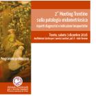 2° Meeting Trentino sulla patologia endometriosica
