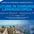 Corso di Suture in Chirurgia Laparoscopica Univ. Foggia 2017